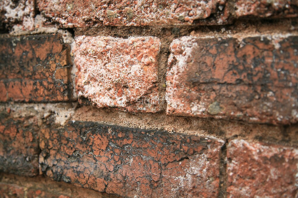 Brick Wall : Photography by Alys Griffiths by sigriff
