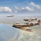 Spitfires over Tunisia by Gary Eason