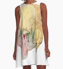 Human Skull Anatomical Scientific Illustration A-Line Dress
