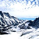 Aletsch Glacier, Switzerland, 2004 by Laura Puglia
