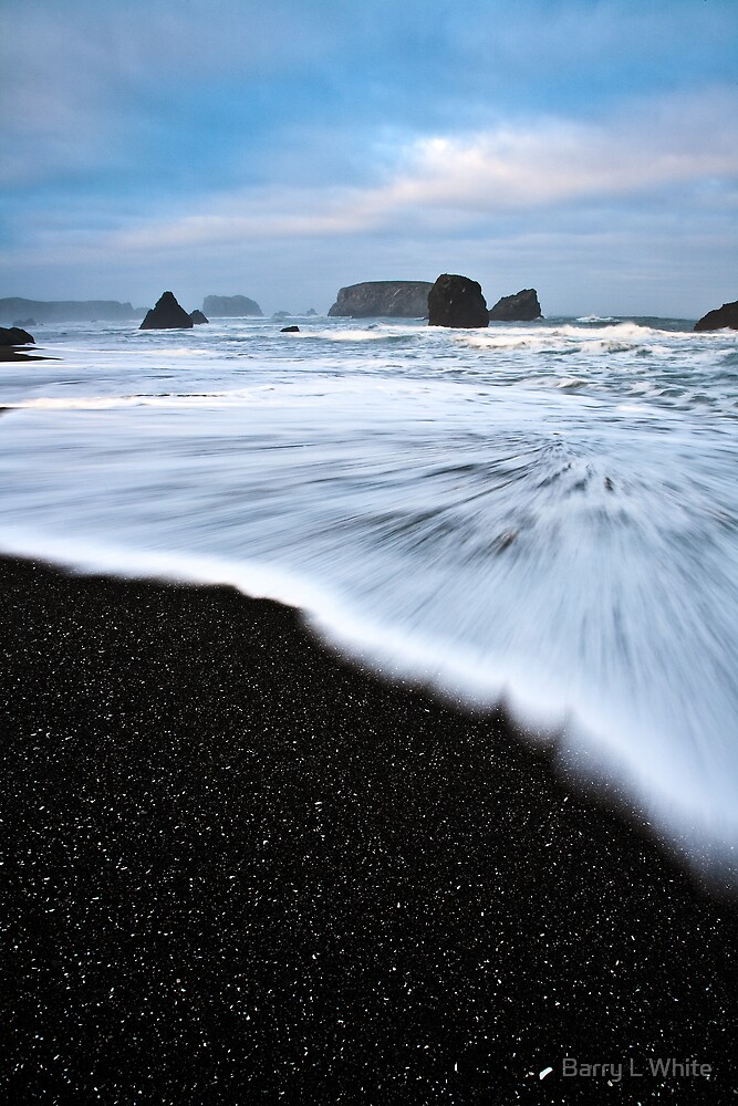 Bandon Beach (#1992) by Barry L White