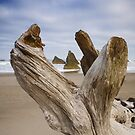Bandon Beach (2027) by Barry L White