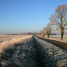 Birthorpe Road Frost by David Pearson