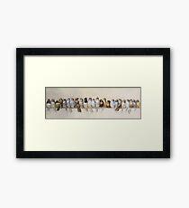 Lámina enmarcada Hector Giacomelli: una percha de pájaros