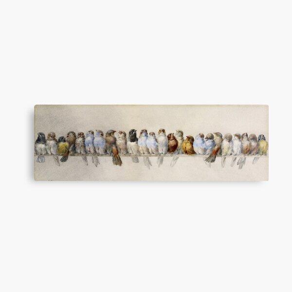 Hector Giacomelli - A Perch Of Birds Canvas Print