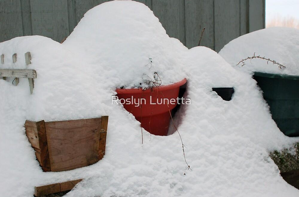 patio snow garden by Roslyn Lunetta