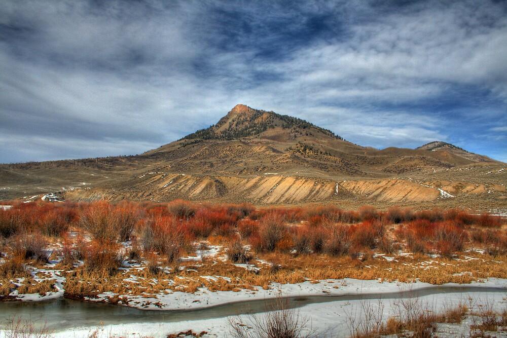 Winter Colors by Scott Ingram