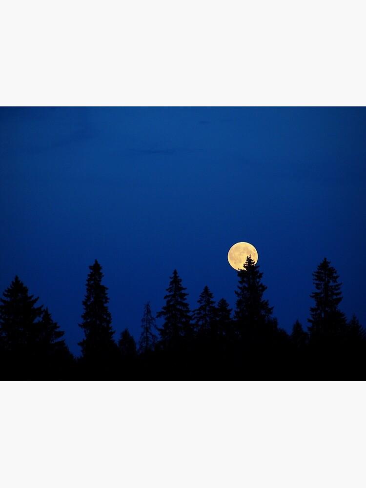 The Moon by annemaris
