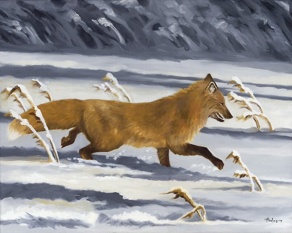 On The Run - Red Fox by John Houle