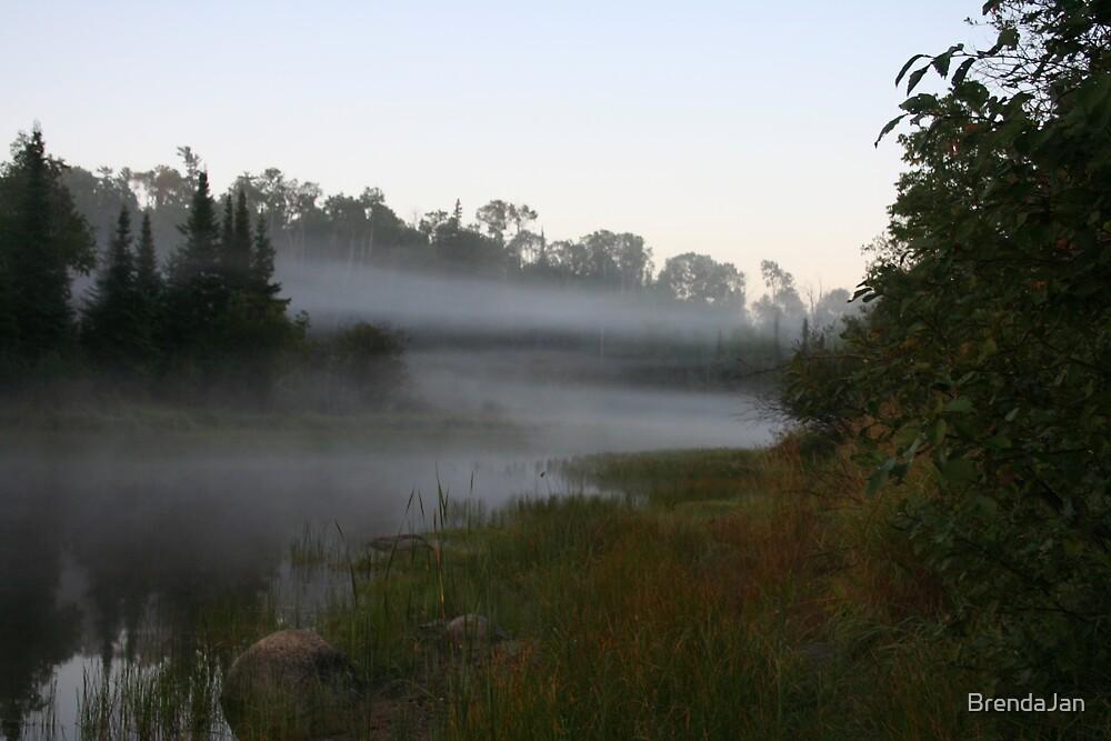 Misty morning in the bay by BrendaJan