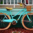 Beach Cruiser Bike by Cynthia48