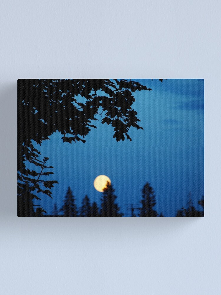Alternate view of You Are The Moon Canvas Print