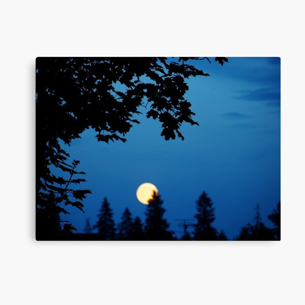 You Are The Moon Canvas Print