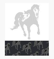 Light/Dark Horse(s) Photographic Print