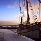 Topsham Quayside by Charmiene Maxwell-Batten