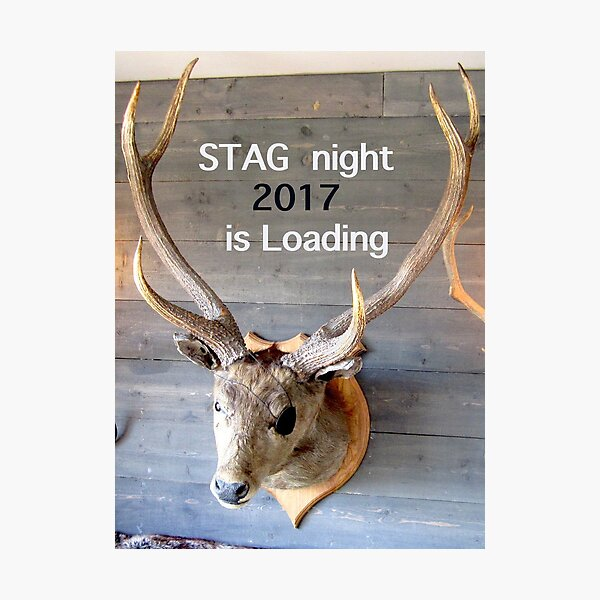 Stag night 2017 is loading Photographic Print