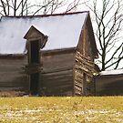 Rustic Old Barn  by Jelderkc