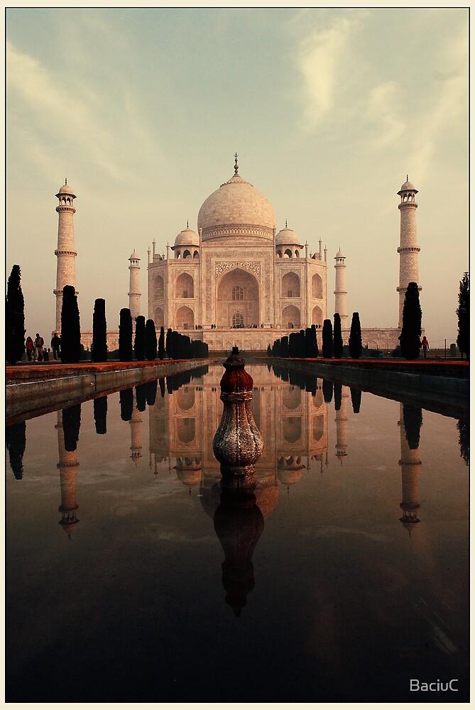 The Taj by BaciuC