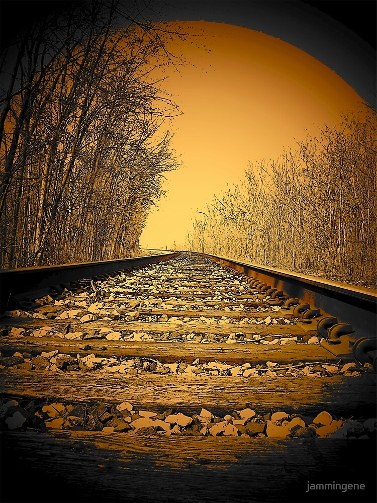 Railroad tracks in the Michigan woods..slipping away by jammingene