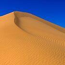 Imperial Dunes by Radek Hofman