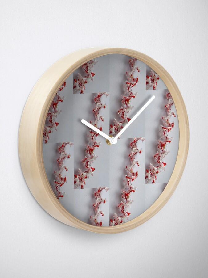 Alternate view of Corals Clock