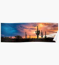 Saguaro Twilight Poster