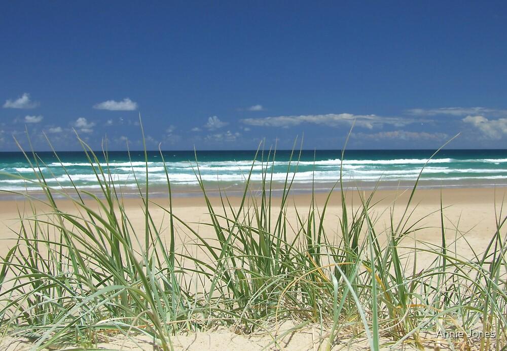 Beach grass by Annie Jones