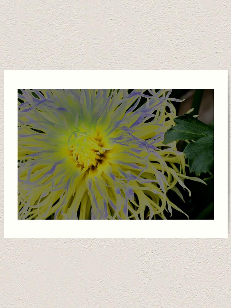 Alternate view of Flowers  2  Art Print