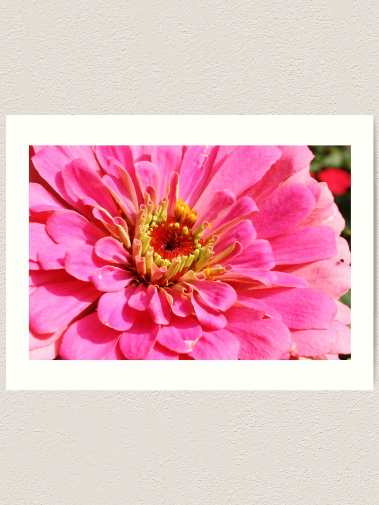 Alternate view of Flowers 4 Art Print