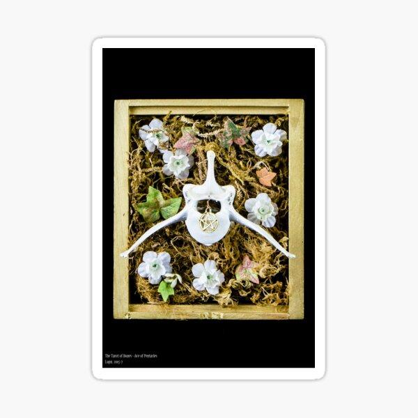 Tarot of Bones - Ace of Pentacles Sticker