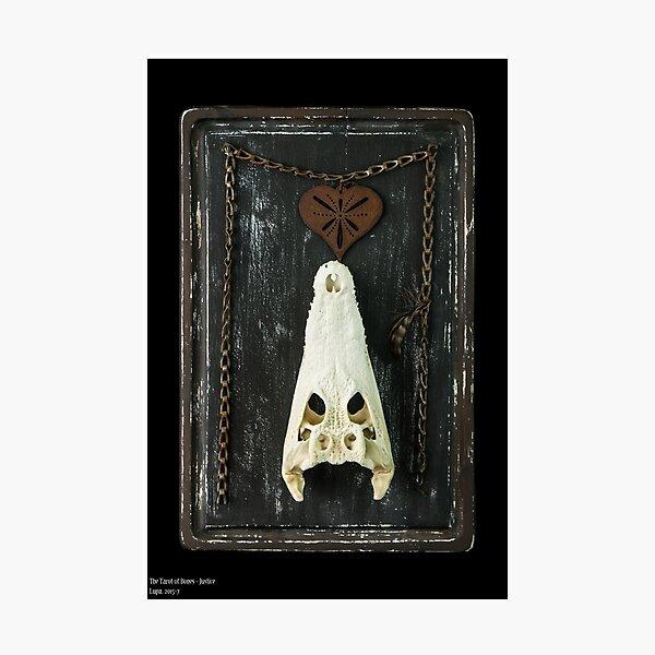 Tarot of Bones - Justice Photographic Print