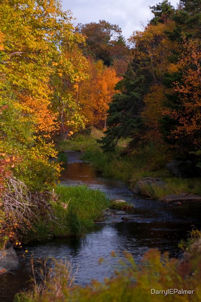 Autumn River by DarrylEPalmer