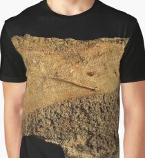 From an Ancient Beach Graphic T-Shirt
