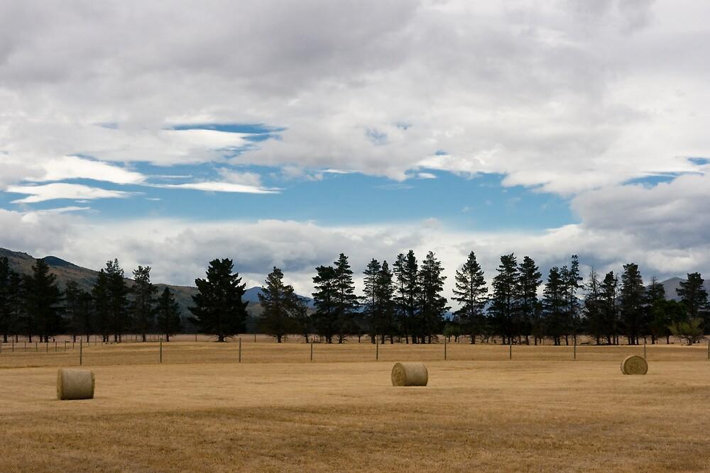 Farming NZ by Chris Putnam