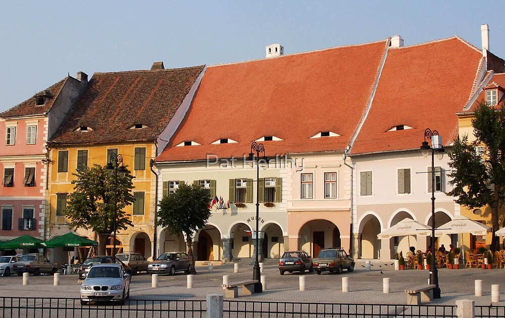 The Houses have Eyes! Sibiu, Romania by Pat Herlihy