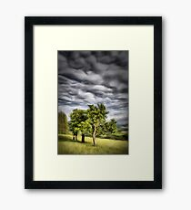 Some trees, some clouds Framed Print