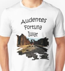Pompeii - Fortune Favors The Bold T-Shirt