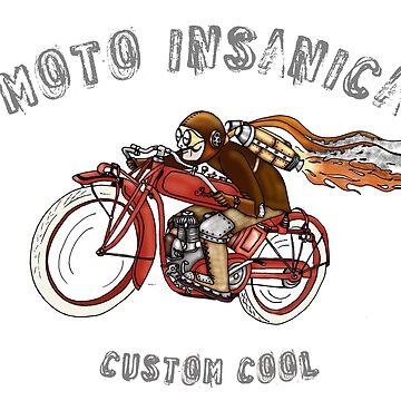 INDIAN MOTORCYCLE MOTO INSANICA by squigglemonkey