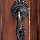Decorative Door Handle by Ethna Gillespie