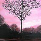 Turning Into Night by WhiteDove Studio kj gordon