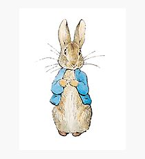 Peter Rabbit Photographic Print