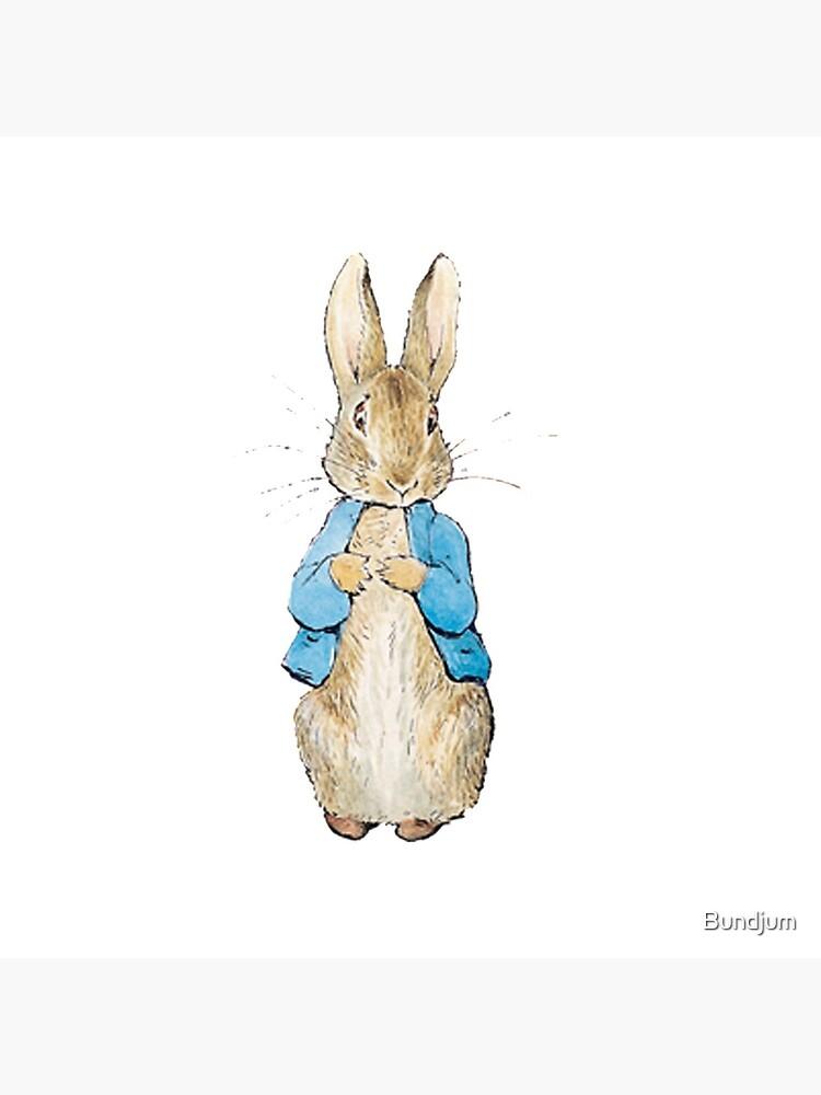 Peter Rabbit by Bundjum