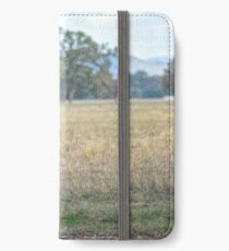 Hereford Cow.......... iPhone Wallet/Case/Skin