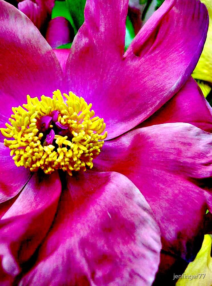 Mom's flower by jenfinger77