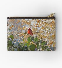 Early Snow Studio Pouch