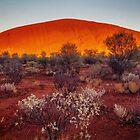 Uluru Sunrise by Bette Devine