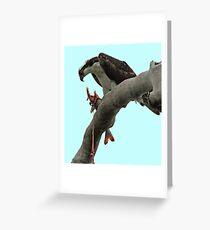 Osprey Gore Greeting Card