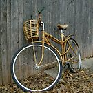 BICYCLE by DarrellMoseley