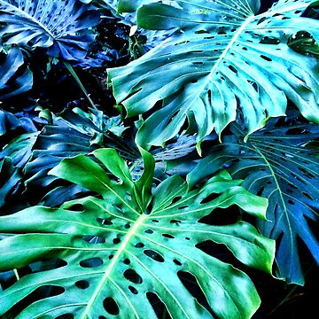 Monstera Botanical - Vibrant Tropical Greenery  by SweetDominique