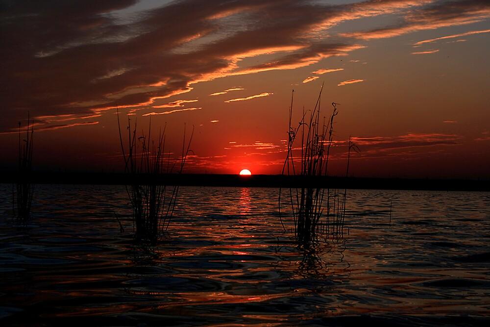Sunset by Dan Cretu